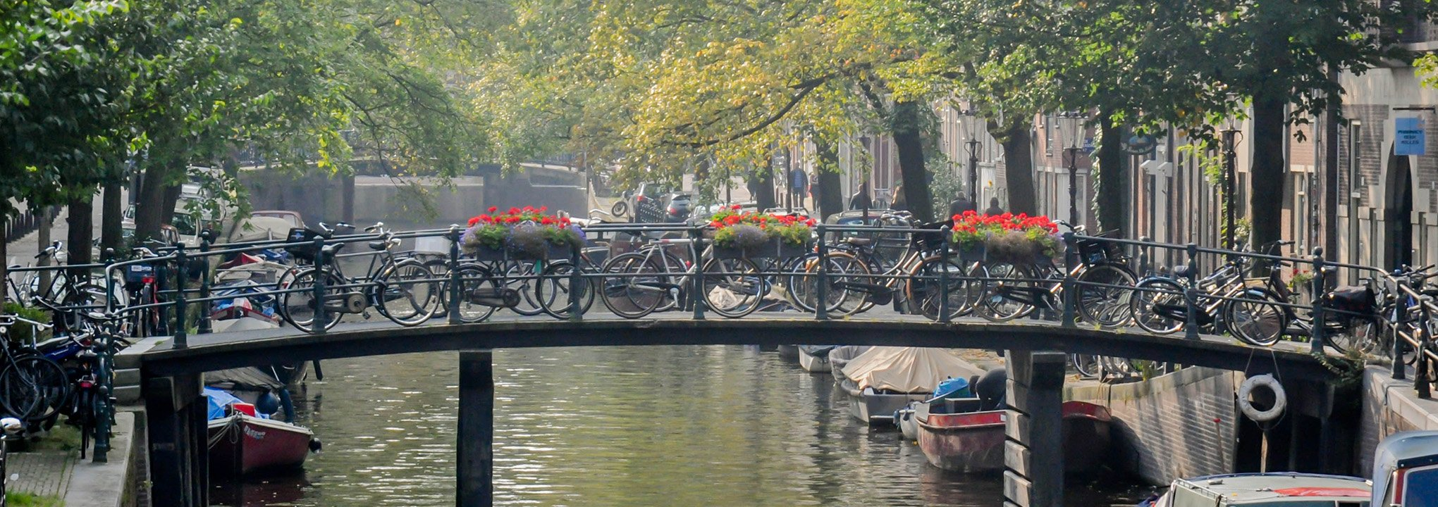Visit Amsterdam city center